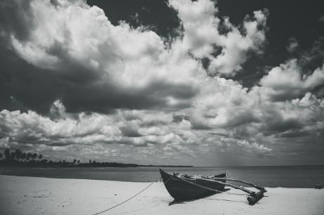 Srilanka  (119)