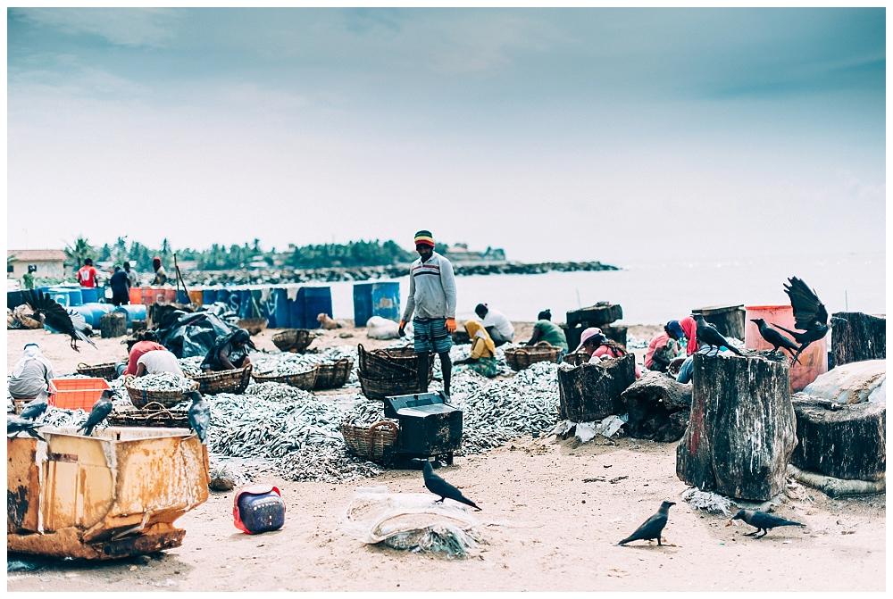 Urlaub Srilanka_0032.jpg