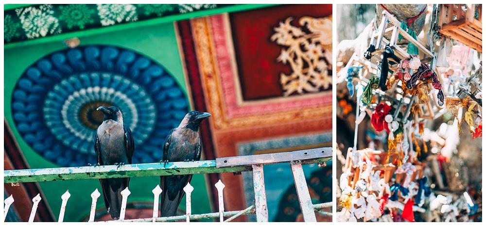 Urlaub Srilanka_0046.jpg