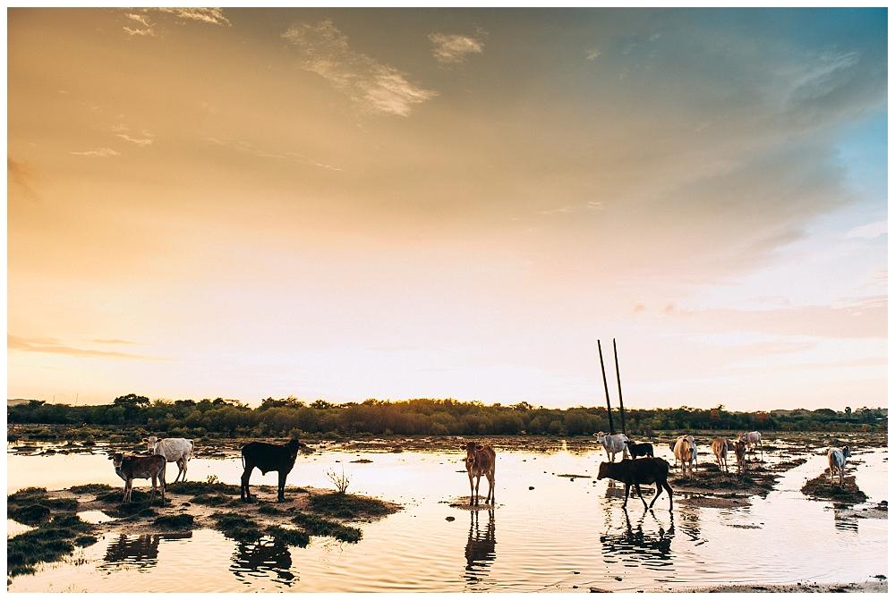 Urlaub Srilanka_0052.jpg
