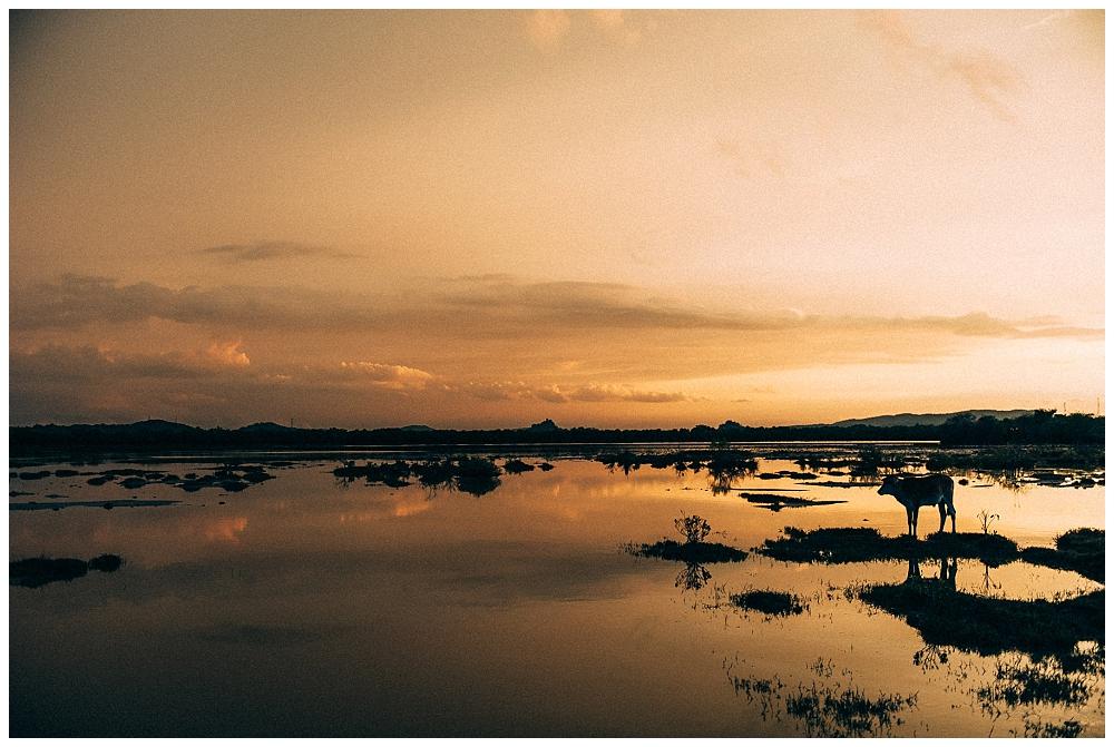 Urlaub Srilanka_0053.jpg