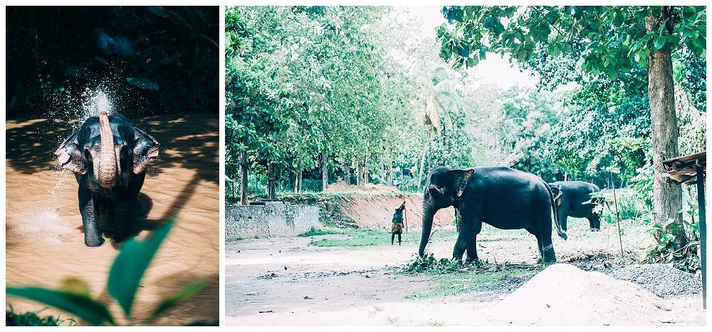 Urlaub Srilanka_0074.jpg