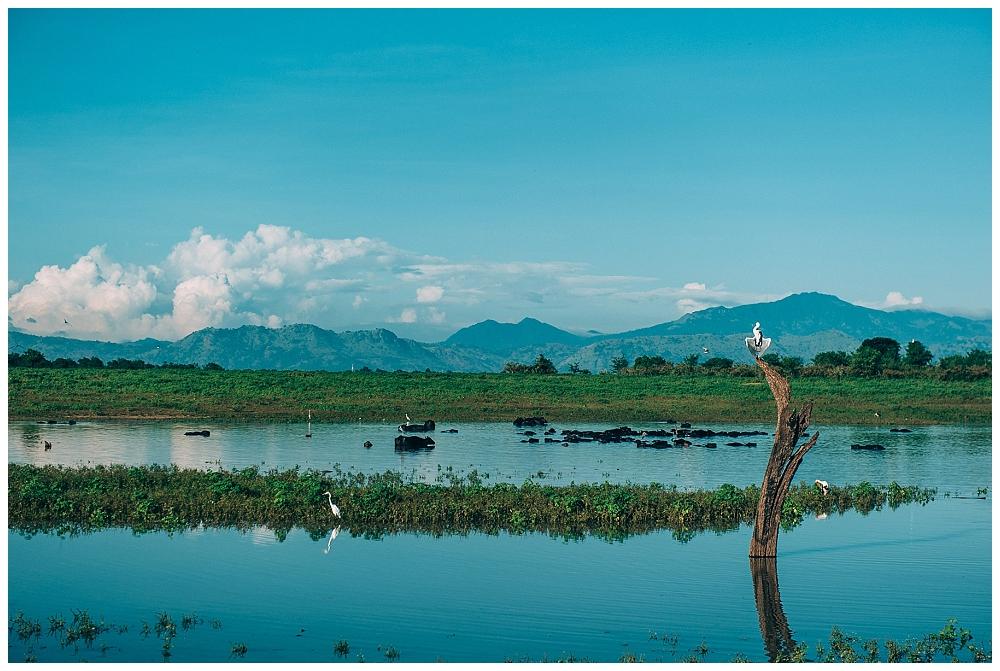Urlaub Srilanka_0090.jpg